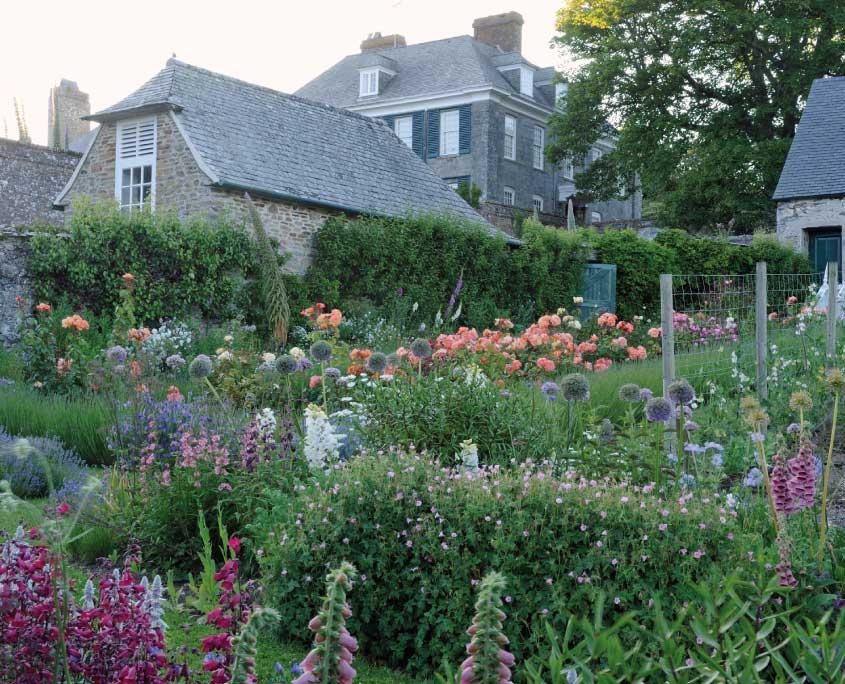 Mothecombe bee garden