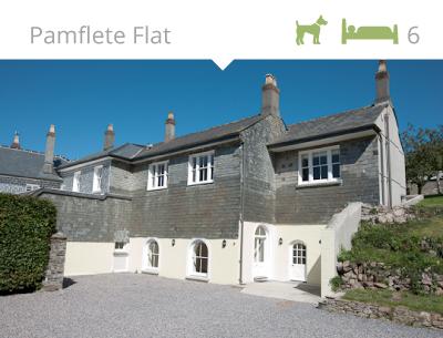Pamflete -Flat