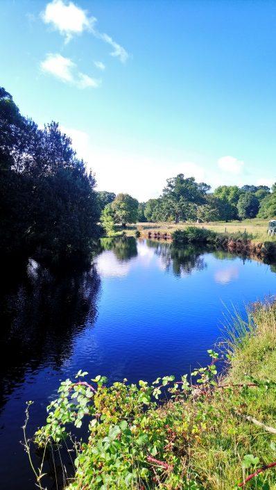 Riverbanks, The Erme River, The Flete Estate, Flete Park, Flete House