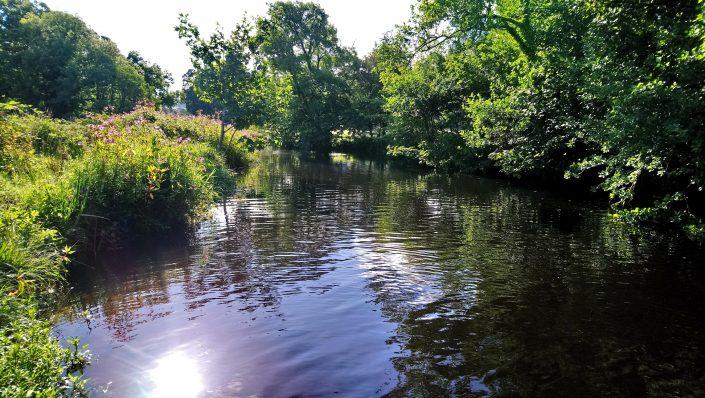 Erme River, Trees, fishing, permit, riverbanks