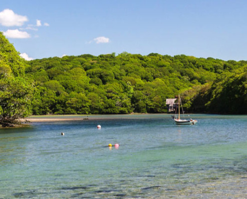 Moorings on the river Erme