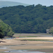 Erme estuary and woodlands