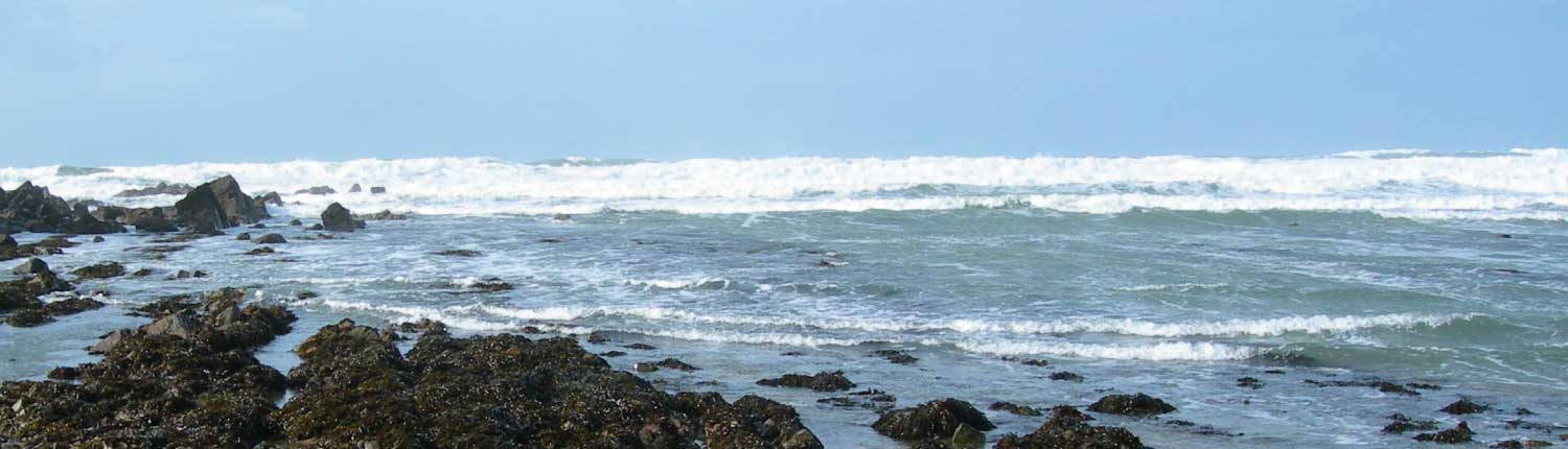 Waves on Mothecombe Beach