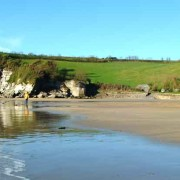 Dogs on Mothecombe beach at winter