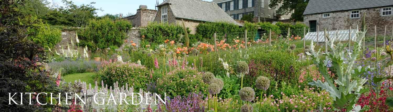 Mothecombe kitchen garden
