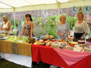 2015 Village Fete at Mothecombe