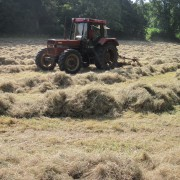 Tractor turning hay