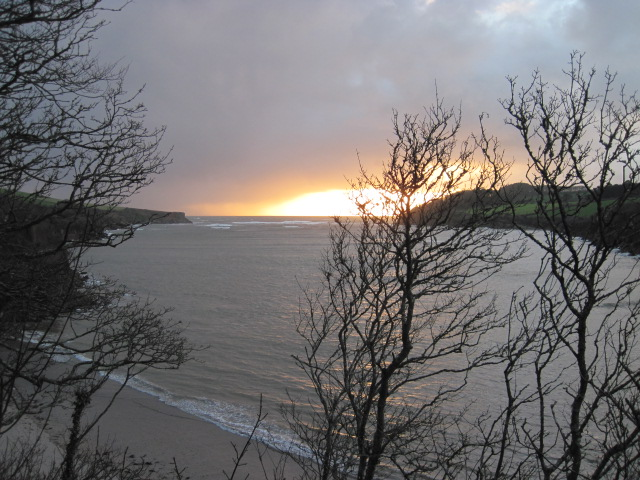 The Erme Estuary Winter