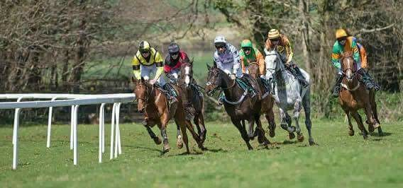 Point to Point Horse Racing at Flete Park