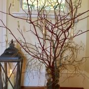 Driftwood Christmas tree at Pamflete House