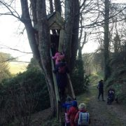 Mothecombe Tree House