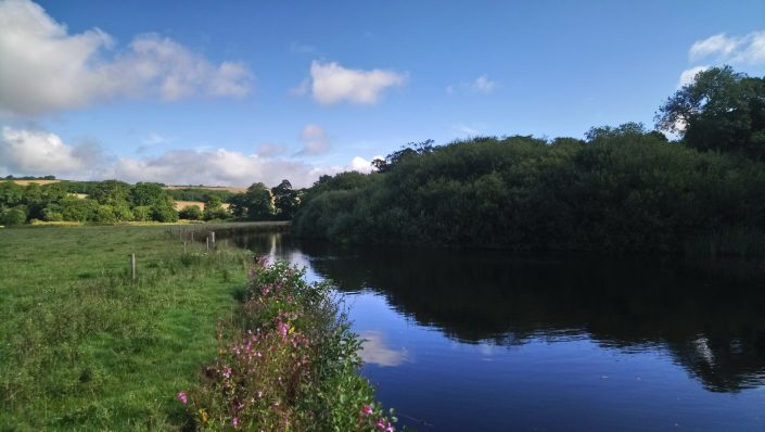 The river Erme, the flete estate, riverbanks, fishing