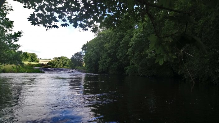 Weir pools, flete estate, river erme