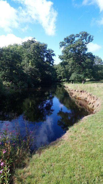 The River Erme, Flete Estate, Tranquility, reflections, trees