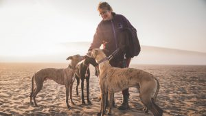 Coastguards beach, flete estate, dog friendly, forthglade, tidal, estuary