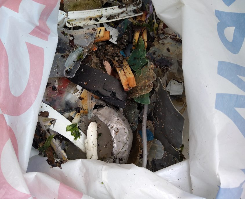 Plastic, beach cleans, surfers against sewage, mothecombe beach, education,